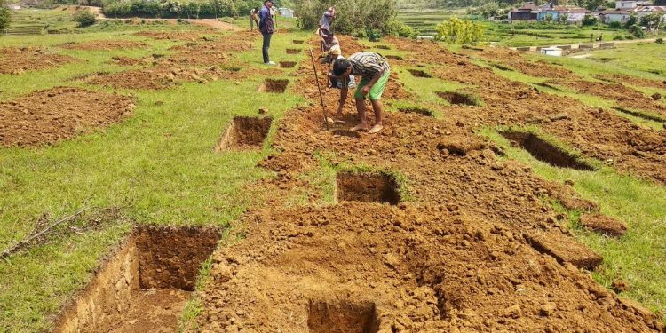Meghalaya to launch One Citizen One Tree campaign 1