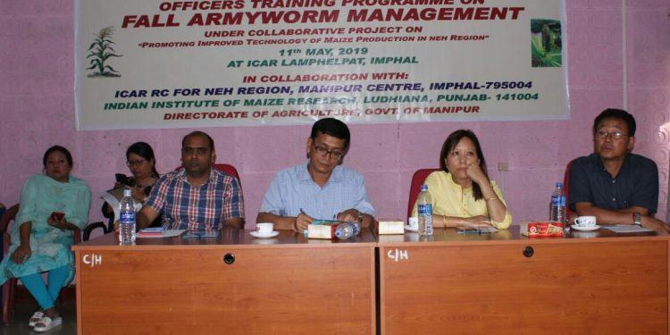 army worm manipur