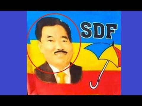 sdf new