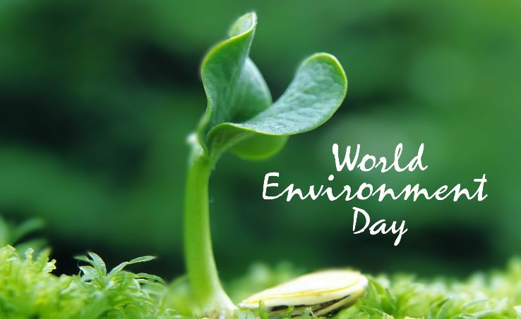 """Image result for world environment day celebrating in """"nepal"""" today 2019"""