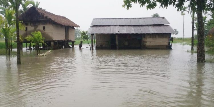 Dwelling houses submerged by Lali river at Kobu-chapori in  Jonai.