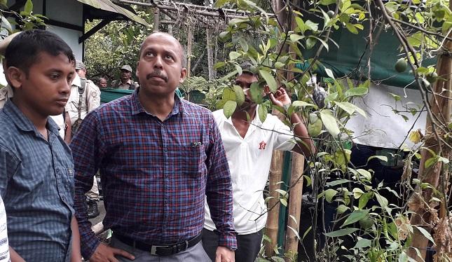 SP, Darrang Amrit Bhuyan (Right) with young farmer Dhrubajyoti Saikia at the later's organic farm field on Tuesday