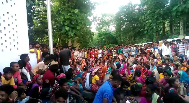 Section 144 imposed in Cachar's Rosekandy Tea Estate 1
