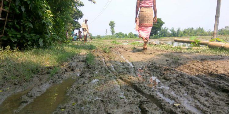 udalguri poor road