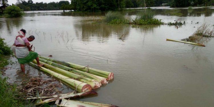 Assam Flood 2019
