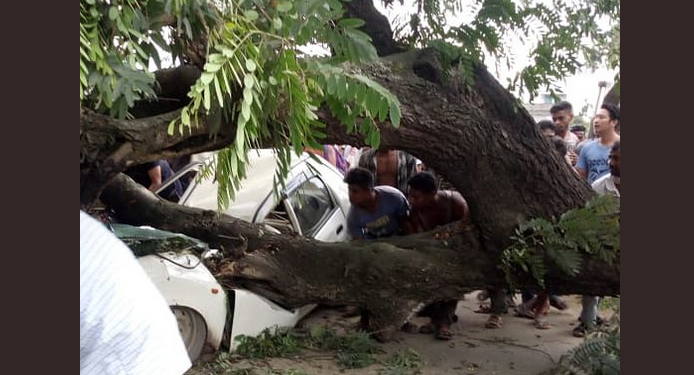 Two killed as tree falls on a moving taxi near Dimapur 1