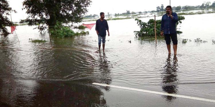 Flood affected Kaziranga National Park. (File image)