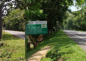 A view of the NH-37 which passes through Kaziranga National Park. Image credit - Northeast Now