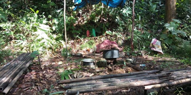 Assam Rifles personnel along with police on Sunday launched operations in the deep jungles and destroyed two hideouts.