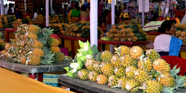 The 12th State Level Pineapple Festival at Thambalnu Market
