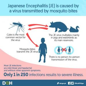 Arunachal: DMO Pasighat issues advisory to contain of Japanese Encephalitis 3