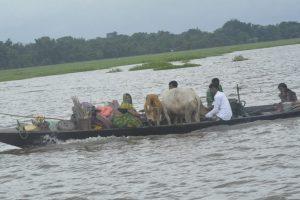 Assam: Forest officials survey flood devastated Orang National Park 3