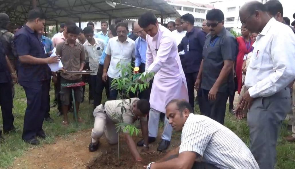 Bamboo can change state economy, says Tripura CM 1