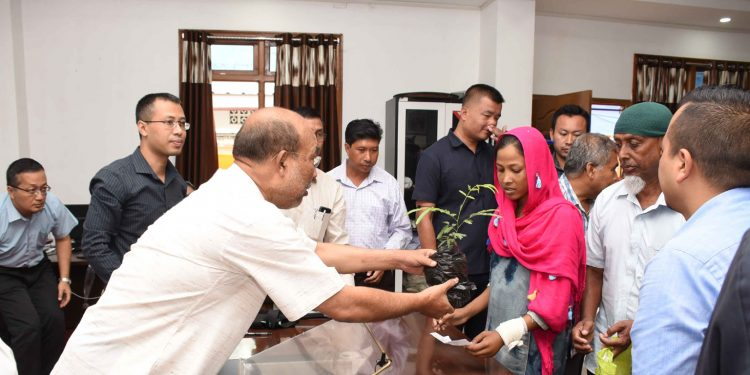 Manipur CM N Biren Singh handing over saplings on Friday. Image: DIPR Manipur