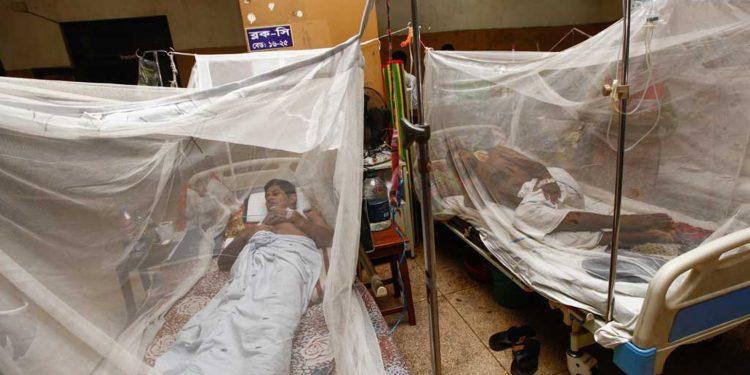 Dengue patients undergoing treatment in Dhaka.  File mage credit: Dhaka Tribune