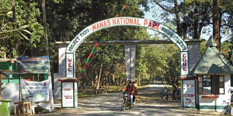 Entrance gate of Manas National Park