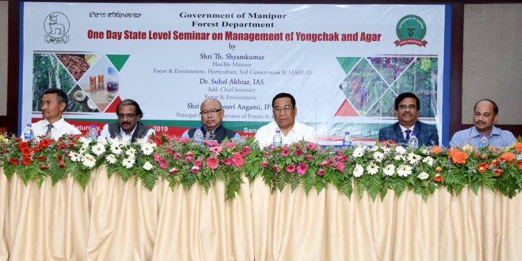 Image: DIPR, Manipur
