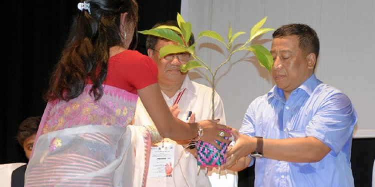 A tree sapling is presented to MAHUD minister Th Shyamkumar during a function recently. Image: DIPR, Manipur