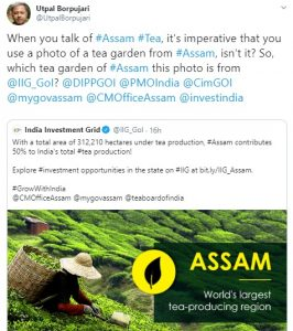 India Investment Grid advertisement goofs up image of Assam tea garden 1