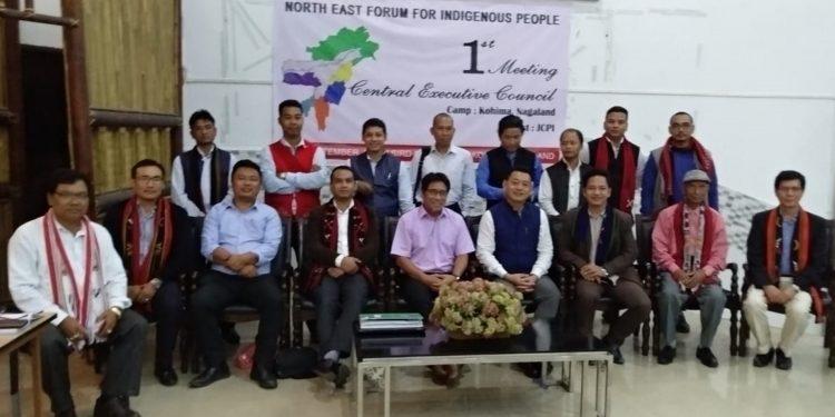 NEFIP delegation