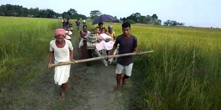 A pregnant lady in Majuli was carried on a horse-cart
