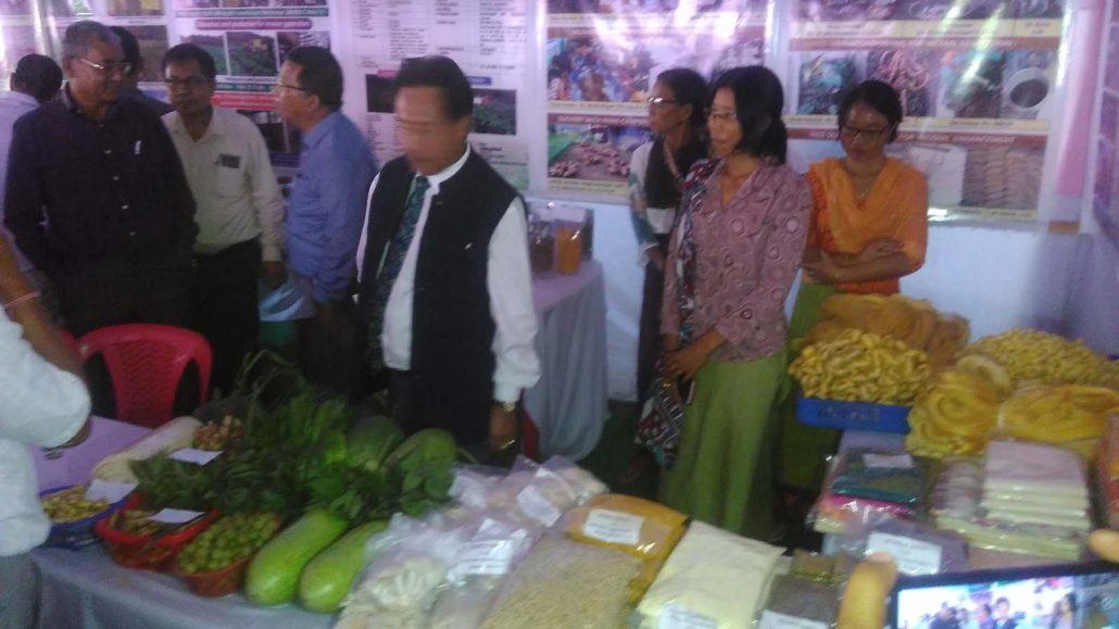 National Indigenous Seeds Festival 2019 underway in Manipur 4