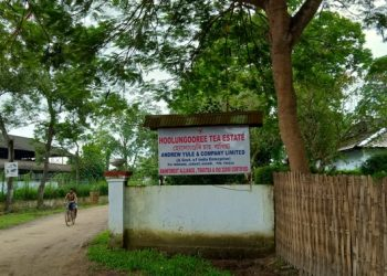 Entrance gate of Hoolungooree Tea Estate, Image credit: Mahesh Deka