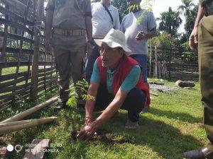 Arunachal sanctuary observes Wildlife Week in East Siang 1