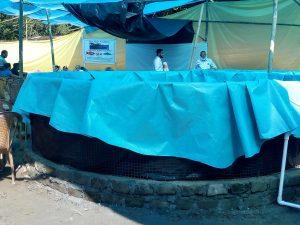 Assam: Bio floc fish farming unit set up in Dibrugarh 1