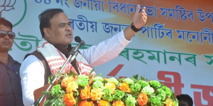 Assam finance minister Himanta Biswa Sarma  (file image)