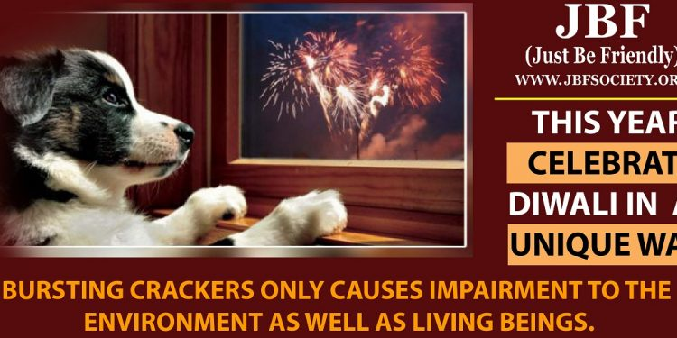 Assam: Care for animals during Diwali 1