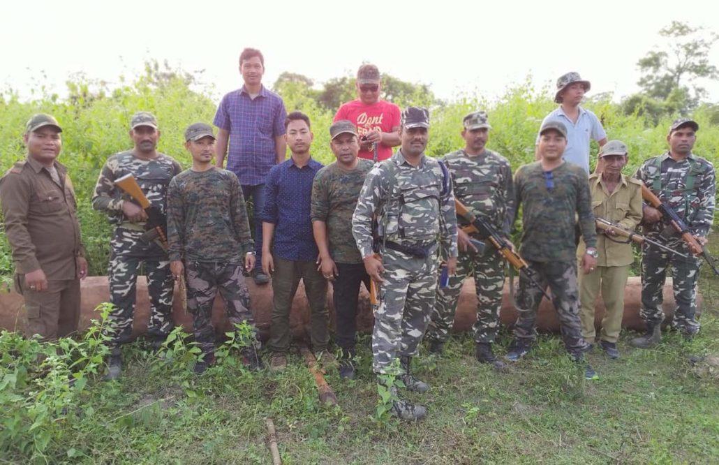 Assam: Valuable logs seized in Kokrajhar & Chirang 3
