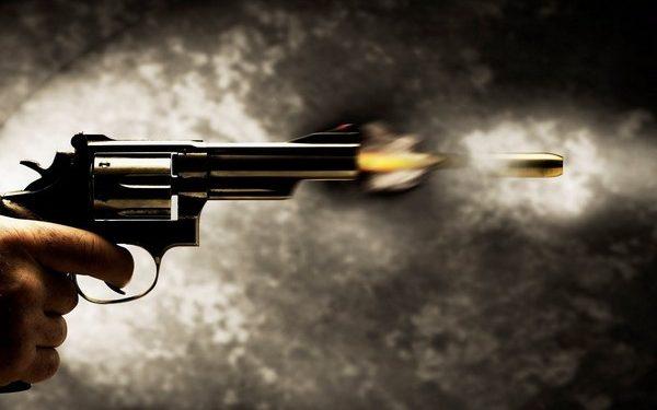 Police gun down NDFB militants