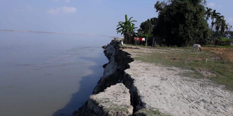 Latest erosion at Jaleswar in Goalpara. Image: Northeast Now