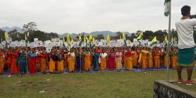 Bodo Kochari Autonomous Council