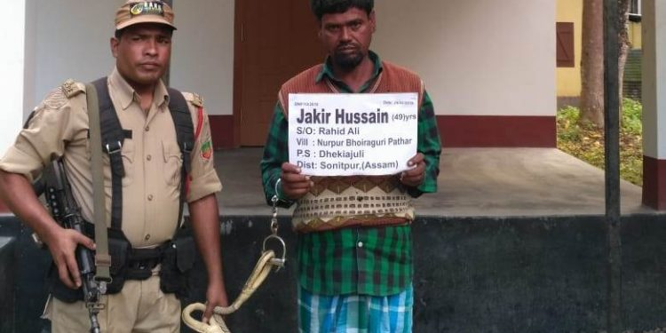 Rhino poacher Jakir Hussain, 49, was arrested on Tuesday from his home.