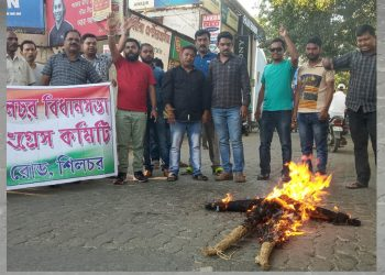 Youth Congress burns effigy