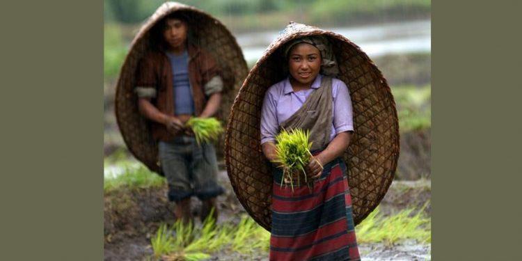 Meghalaya farmers' Day