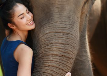 BOOK REVIEW   'The Elephant Girl': Of intrigues and royalty 3