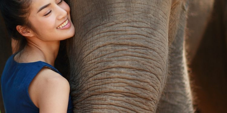 BOOK REVIEW | 'The Elephant Girl': Of intrigues and royalty 1