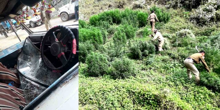 Cannabis cultivators attacked Tripura police personnel o Thursday and damaged a vehicle