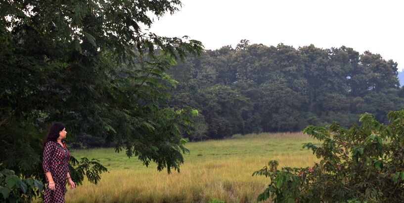 Wetland and biodiversity 2