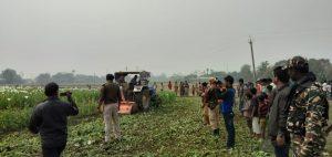 Assam: Police destroy 100 bighas of poppy cultivation 1