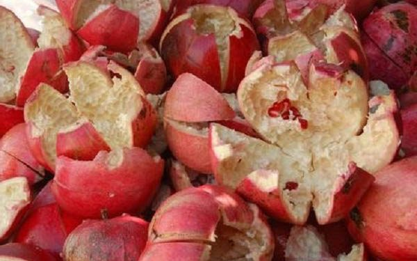 Benefits of pomegranate peels 1