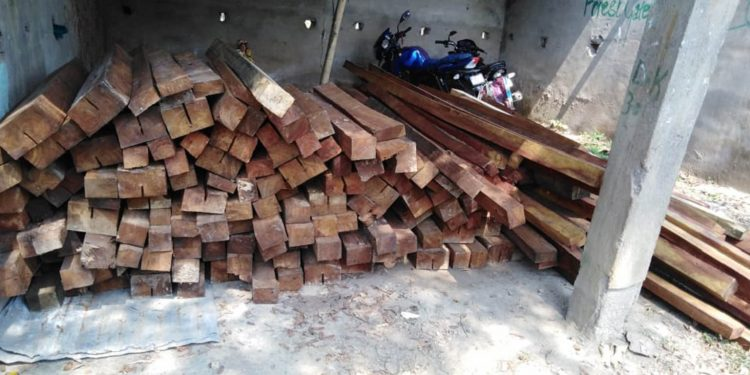 Illegal timber seized by Karbi Anglong forest officials. Image: Northeast Now