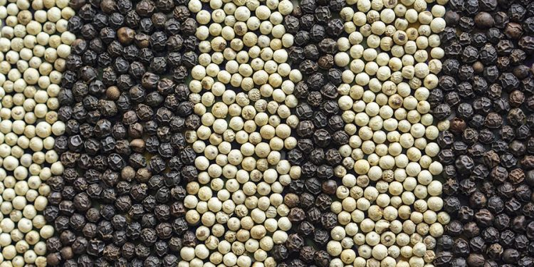 Black pepper helps prevent cancer 1