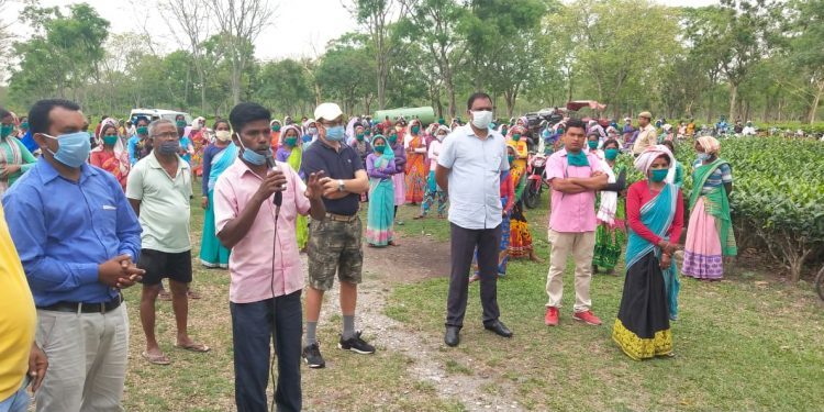 ACMS Mangaldoi branch Secretary  Santiuse Kujur  ( in white T shirt) conducting awareness drive against corona virus at a tea garden in Udalguri district on April 29,2020. Image: Northeast Now