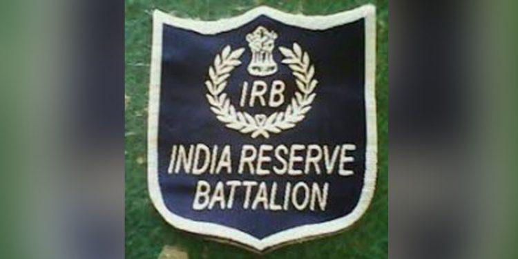 IRB logo