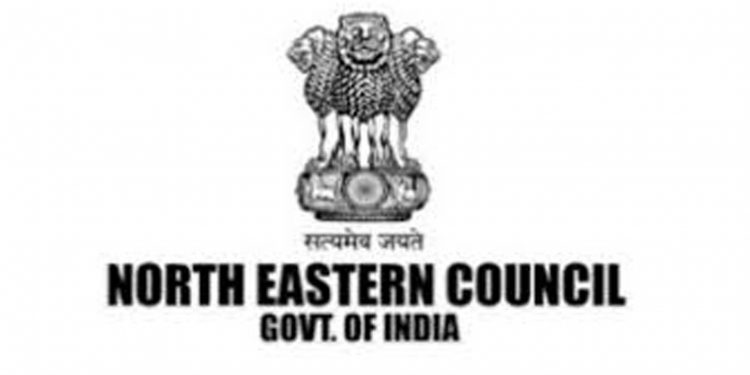 COVID-19 pandemic: NEC sanctions Rs 11.25 crore to Assam, Arunachal, Meghalaya 1