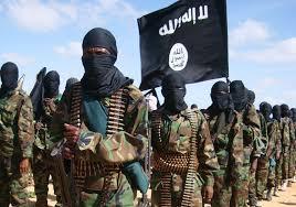 Al Qaeda terrorist .